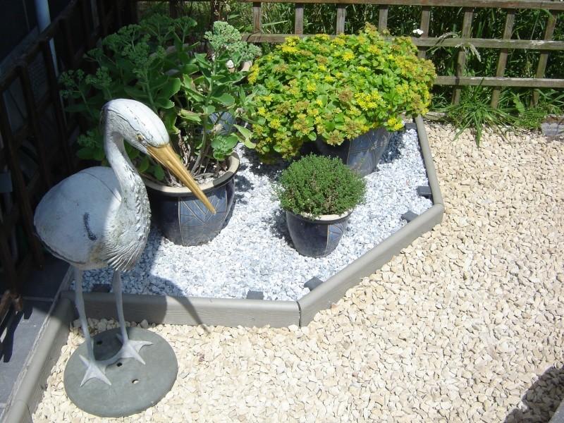 contruire un bassin  jardin Dsc08515