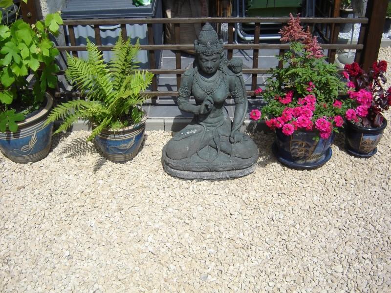 contruire un bassin  jardin Dsc08516