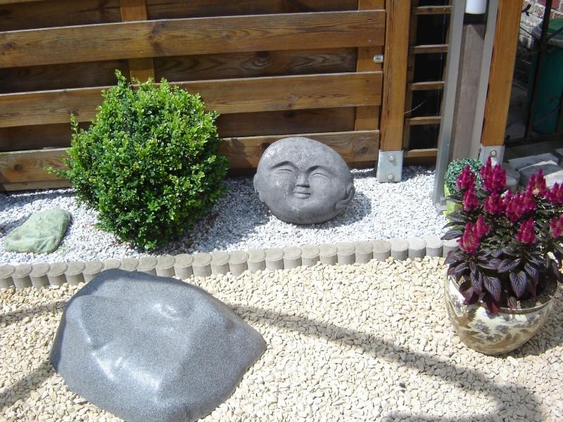 contruire un bassin  jardin Dsc08518