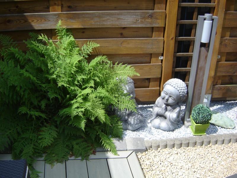 contruire un bassin  jardin Dsc08519