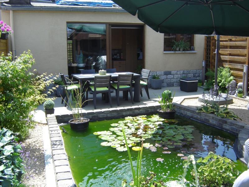 contruire un bassin  jardin Dsc08520