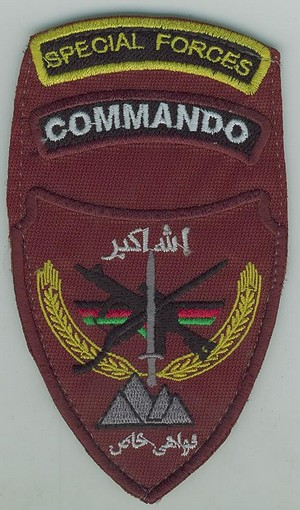 Afghan National Army Commando Patches Anasf110