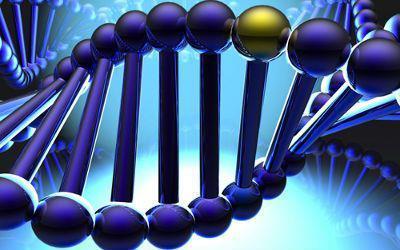 Identifican genes de la cara  Adn10
