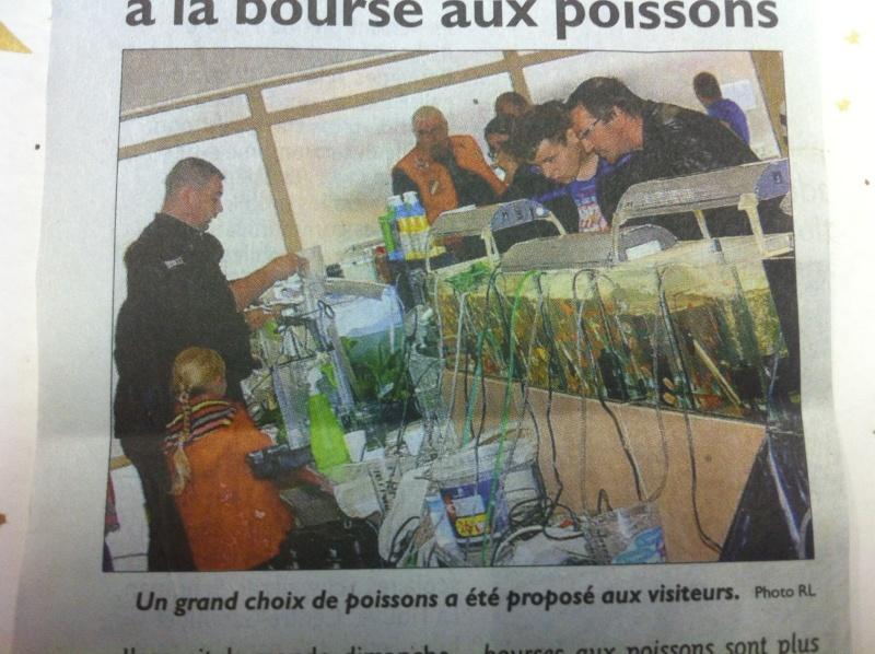 Bourse aux poissons de L'Hôpital (Moselle) le 23 sept. 2012 - Page 4 Img_2310