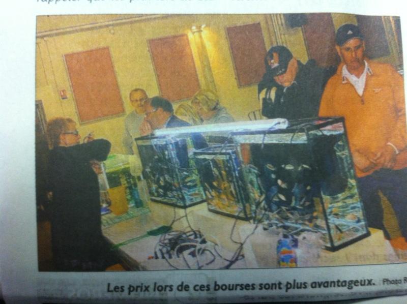 Bourse aux poissons de L'Hôpital (Moselle) le 23 sept. 2012 - Page 4 Img_2311