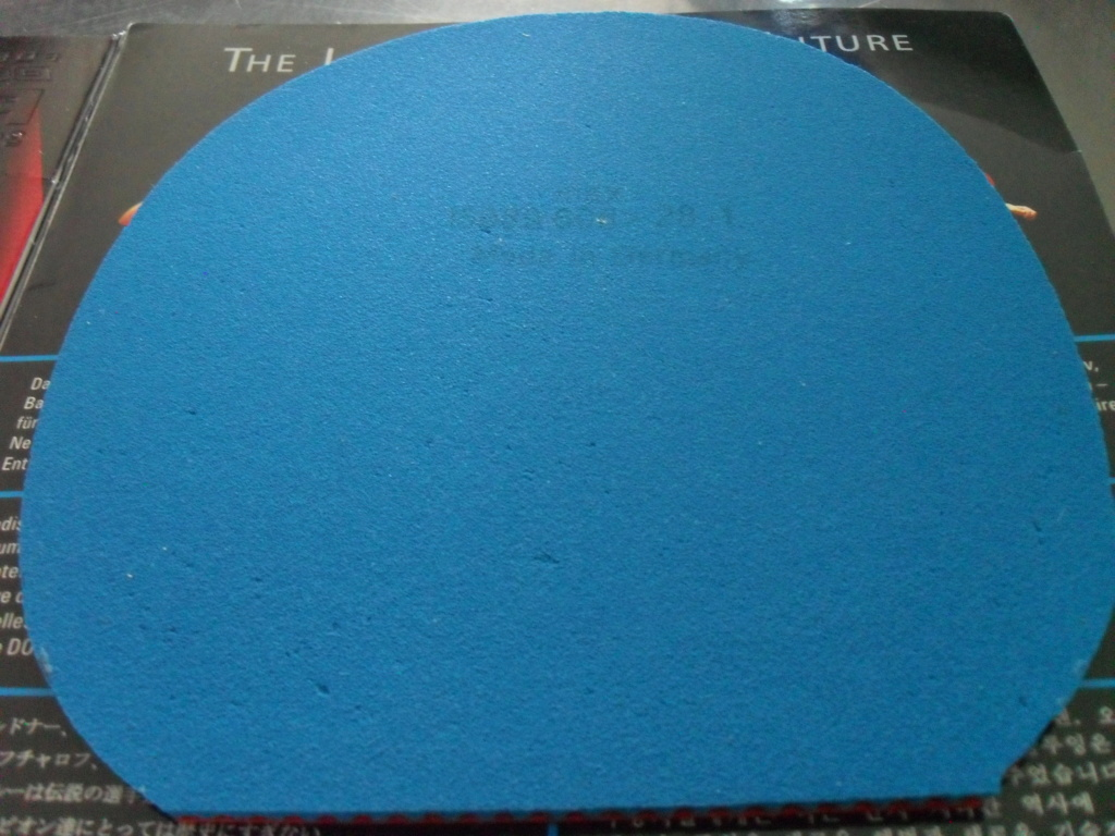donic bluefire bigslam Sdc12615