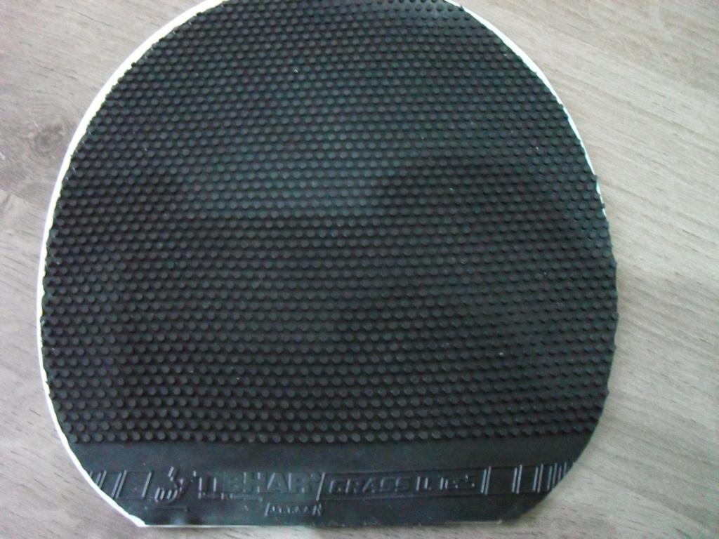 Thibar Grass D-tech noir ox Sdc13020