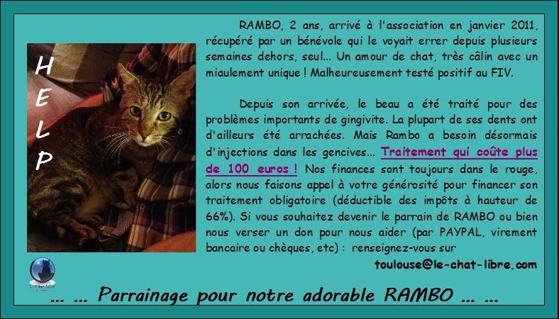 rambo - RAMBO FIV+ - Page 2 Rambo10