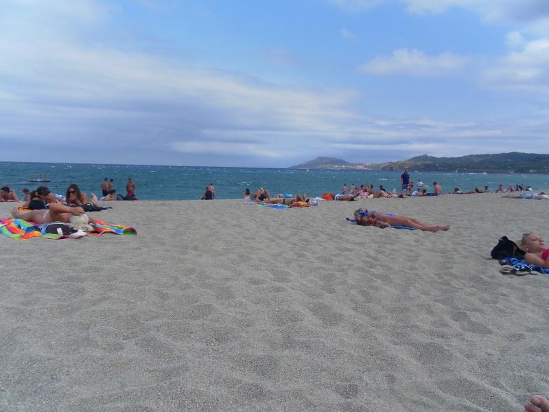 camping L'Europe*** à Argelès-sur-mer Sam_1514