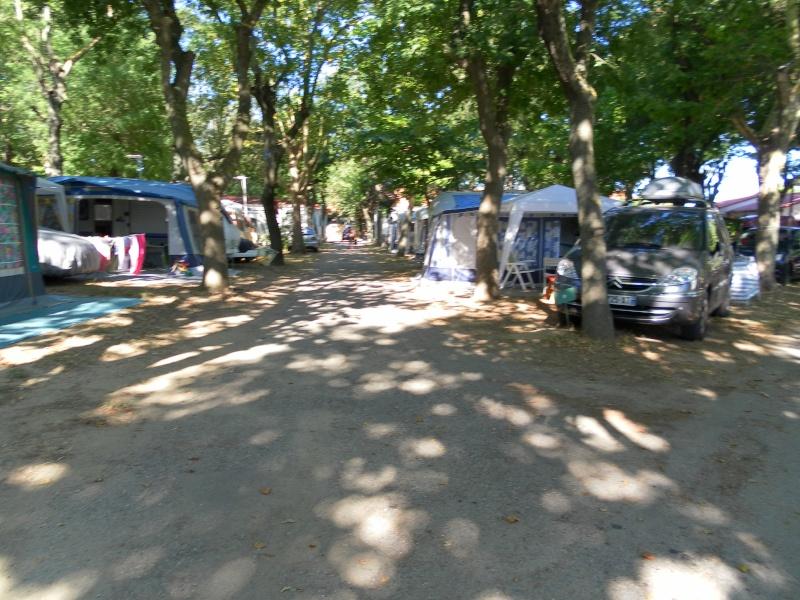 camping L'Europe*** à Argelès-sur-mer Sam_1611