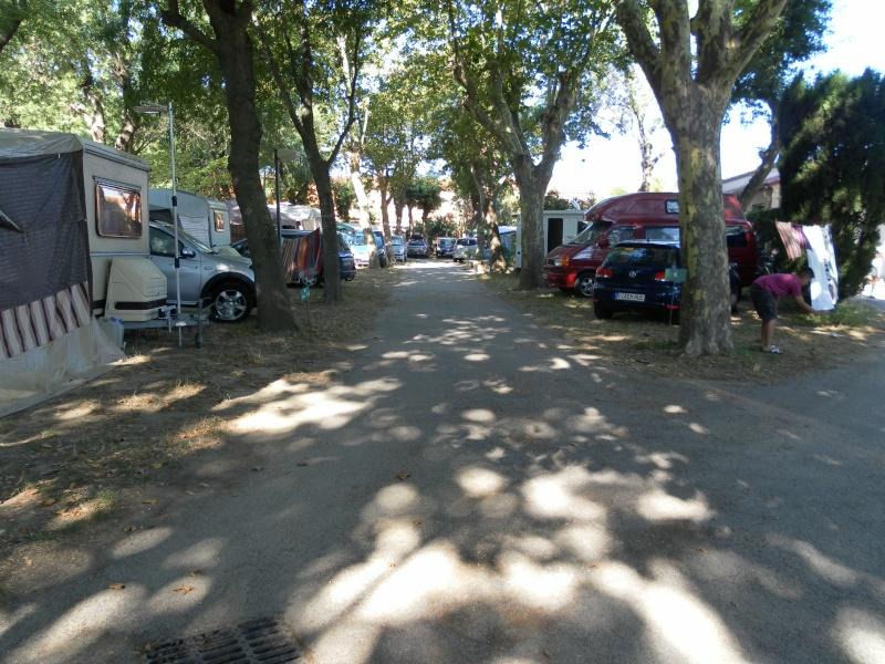 camping L'Europe*** à Argelès-sur-mer Sam_1612