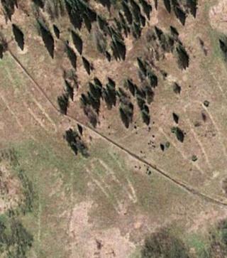 archéologie - géoglyphe - lac Zjuratkul - colline - crête - forum - montagnes de l'Oural - Russie - Kazakhstan - wapiti - cerf - Alexander Shestakov - ongulé