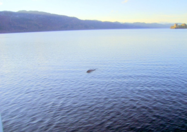 Loch Ness, cryptozoologie, George Edwards, Drumnadrochit, cryptide lacustre, Ecosse, novembre 2011, aout 2012, Steve Feltham, chateau d'urquhart, photographie, cryptozoology