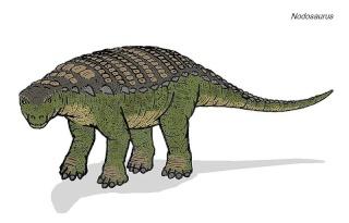 Nasa - Ray Stanford - nodosaure - nodosaurus - théropode - herbivore - empreinte découverte - Maryland - crétacé - paléontologie - forum - aout 2012