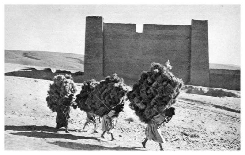 MAROC CENTRAL ( J. Robichez ) - Page 3 Maroc120
