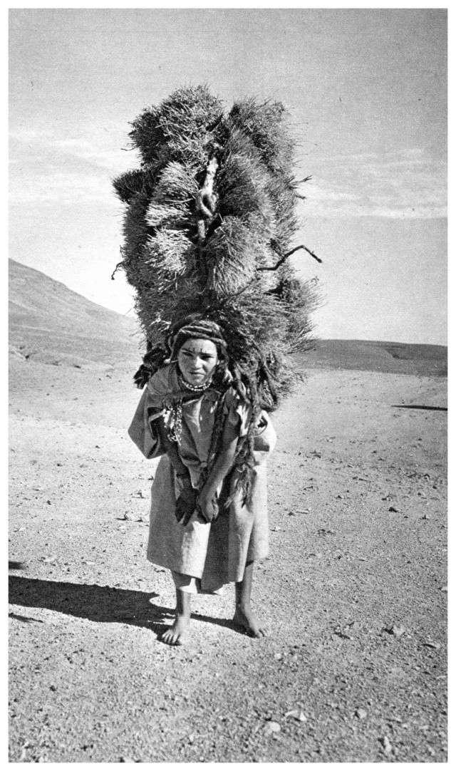 MAROC CENTRAL ( J. Robichez ) - Page 3 Maroc121
