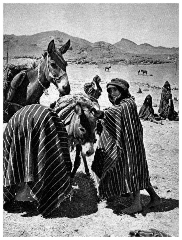 MAROC CENTRAL ( J. Robichez ) - Page 4 Maroc181