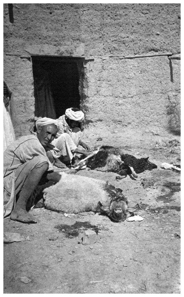 MAROC CENTRAL ( J. Robichez ) - Page 4 Maroc188