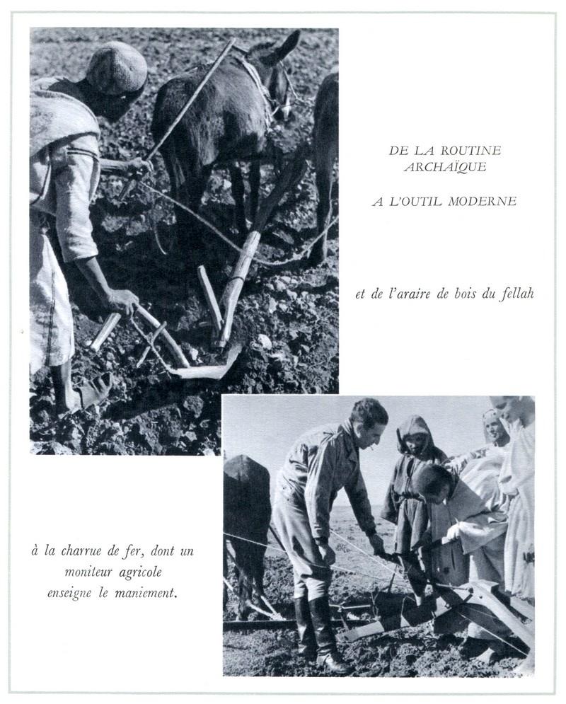 L'Oeuvre de la France au Maroc de 1912 à 1950. - Page 4 Maroc305