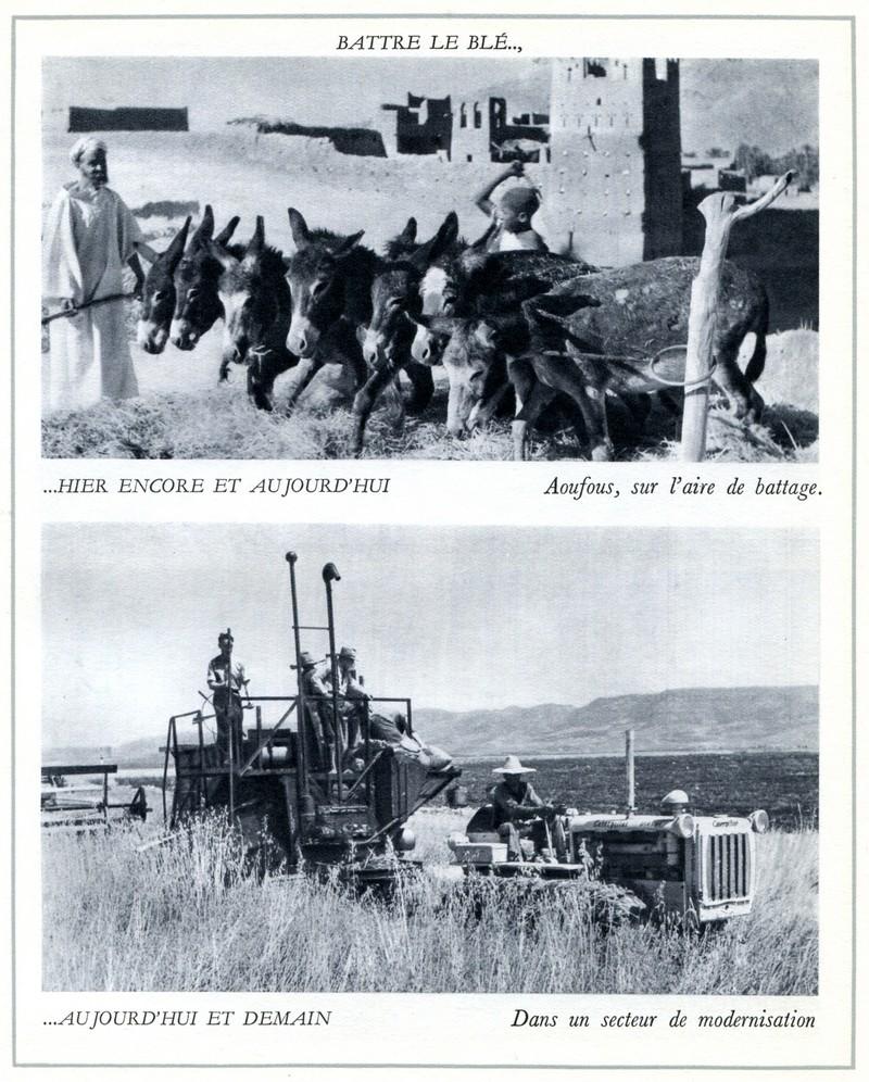 L'Oeuvre de la France au Maroc de 1912 à 1950. - Page 4 Maroc309
