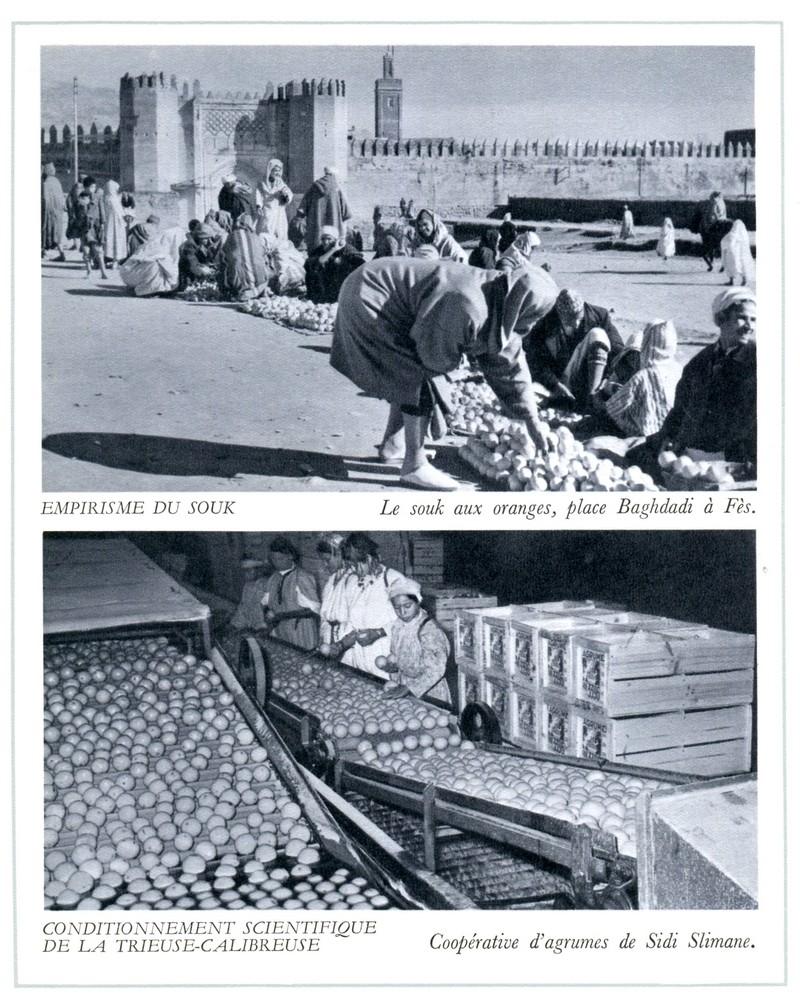 L'Oeuvre de la France au Maroc de 1912 à 1950. - Page 4 Maroc310