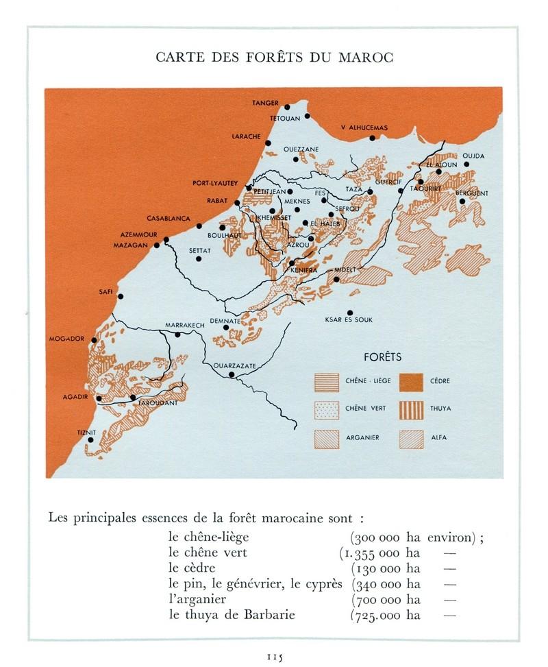 L'Oeuvre de la France au Maroc de 1912 à 1950. - Page 5 Maroc319