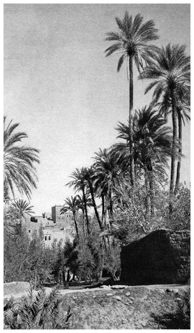 MAROC CENTRAL ( J. Robichez ) Maroc_66