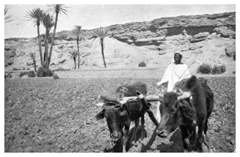 MAROC CENTRAL ( J. Robichez ) - Page 2 Maroc_69