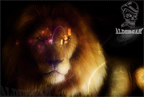 توقييع >> رآيكم مهم  - صفحة 3 Lion110