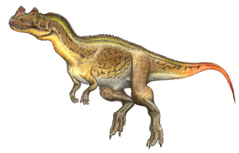 "Erza Scarlet's dinosaurs ""Fairy Tail"" (W.I.P) Cerato10"