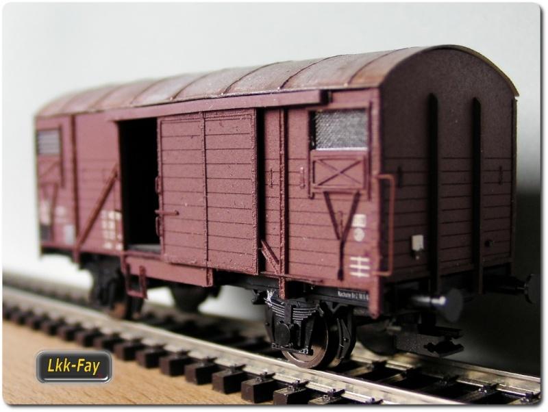 Güterwagen Glm 04 (TM) DR EP4 [M 1:120] Sany3033