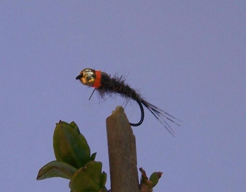 Izbor nimfe za prolećni lov pastrmke - Page 8 61888310