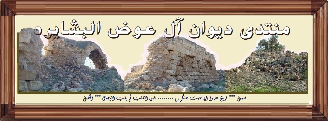 صدام والقضية الفلسطينية  Ou_ouo13