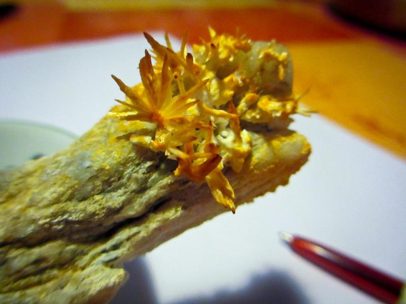 Gemmes (pierres semi précieuses) Img_1311