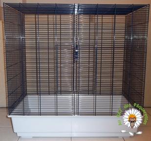 Bricolage d'une grande cage : associer Jenny+ Chichi2, ajout de portes Bricol11