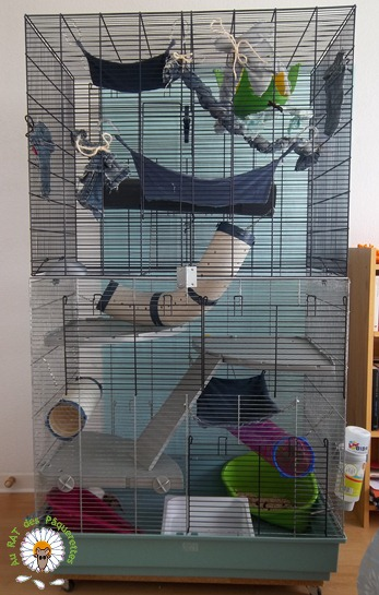 Bricolage d'une grande cage : associer Jenny+ Chichi2, ajout de portes Bricol23