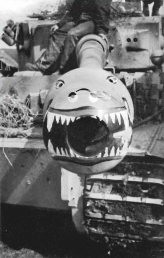 Tiger Jaws Tiger10