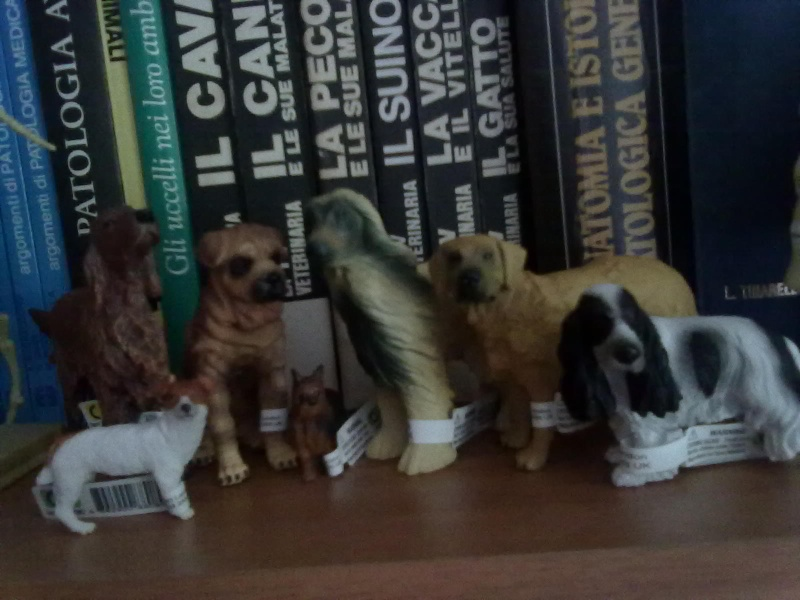 Collecta Dogs + horses + cats collection  12072010