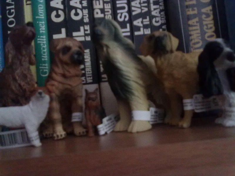 Collecta Dogs + horses + cats collection  12072011
