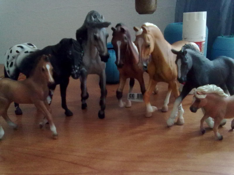 Collecta Dogs + horses + cats collection  12072012