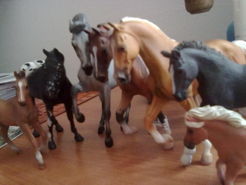Collecta Dogs + horses + cats collection  12072013