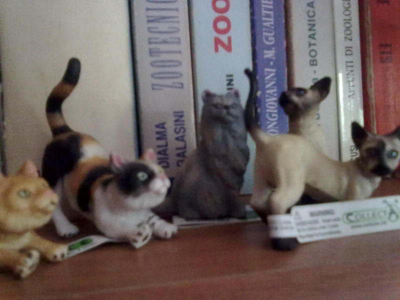 Collecta Dogs + horses + cats collection  12072014