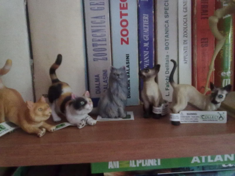 Collecta Dogs + horses + cats collection  12072015
