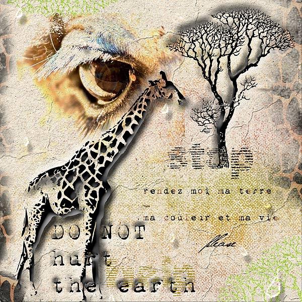 Challenge C&S N°21 jusqu'au 21 juillet - Page 2 Girafe10