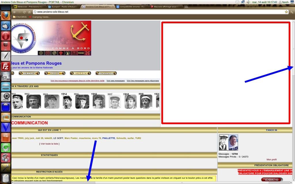 [Résolu] Problème d'affichage avec Chrome Captur10