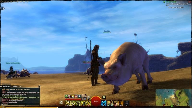 Babe le cochon! Gw00910