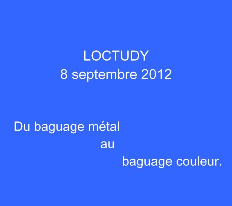 Conférence-débat : Oiseaux de passage sur le littoral du Pays Bigouden - Loctudy le 8 septembre 2012 à 20h 5b_tit10