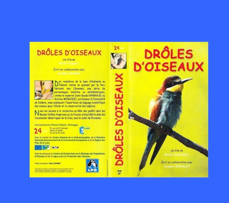 Conférence-débat : Oiseaux de passage sur le littoral du Pays Bigouden - Loctudy le 8 septembre 2012 à 20h Entrae10