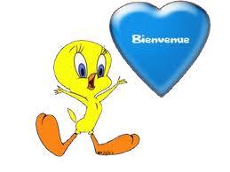 Présentation de Carmout Bienve10