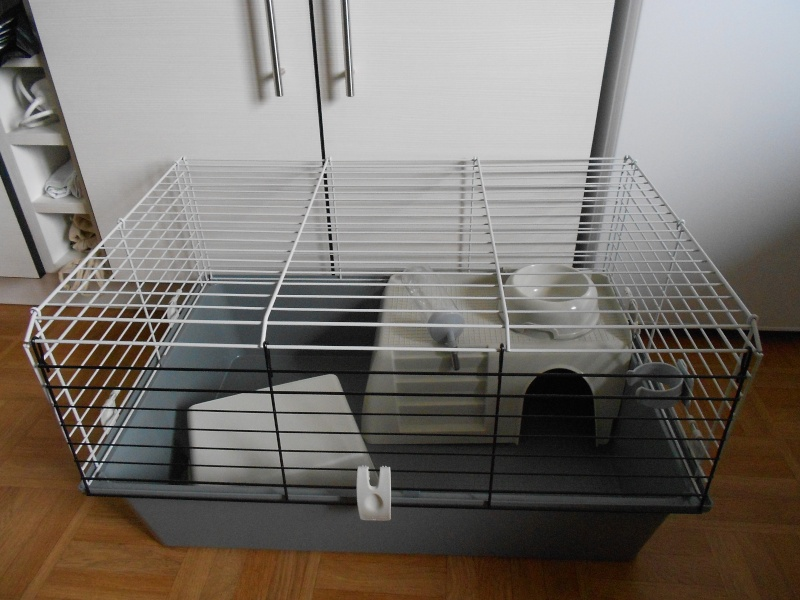 Vend cage Dscn3116